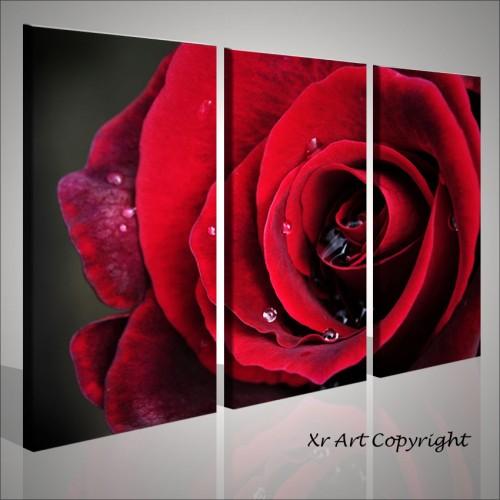 Quadro rosa rossa stampa su tela quadri moderni - Ikea quadri moderni ...
