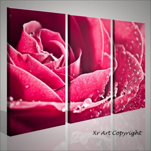 Beautiful rose quadri moderni fiori e rose   Quadri moderni